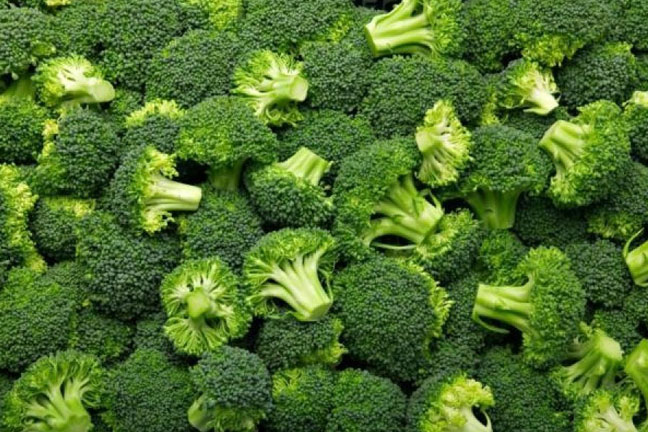 Western Pacific Produce Broccoli