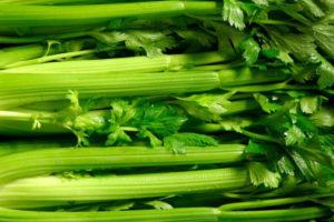 Western Pacific Produce Celery
