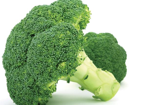 Western Pacific Produce Export Broccoli