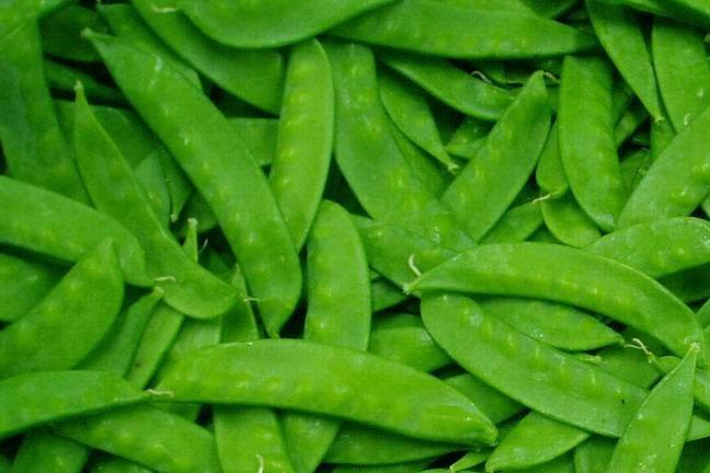 Western Pacific Produce Snow Peas