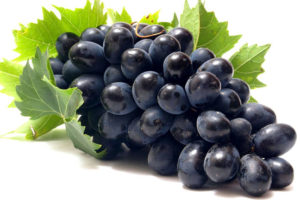 Black Grape Export - Western Pacific Produce