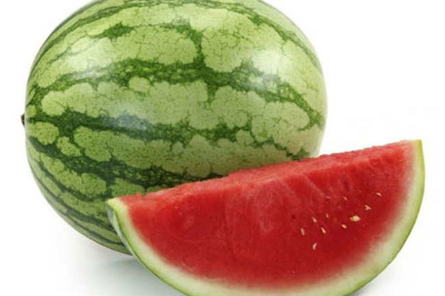 Watermelon Melon Export by Western Pacific Produce